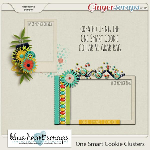 bhs_onesmartcookie_clusters