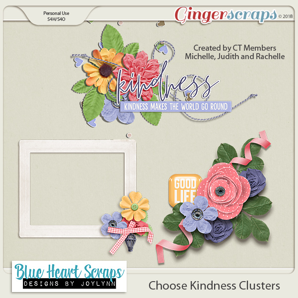 Choose Kindness $5 Grab Bag + GS Birthday Celebration! + Freebie