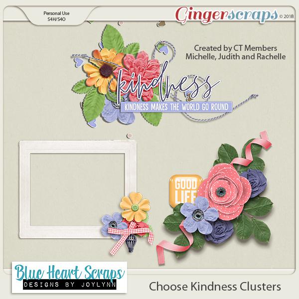 Choose Kindness $5 Grab Bag + GS Birthday Celebration! + Freebie
