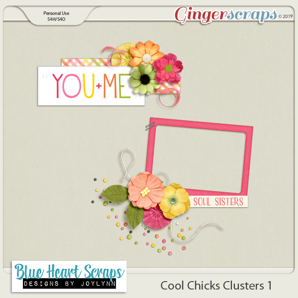 Cool Chicks Collab $6 Grab Bag + Freebie!